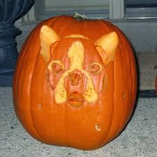 Minion Pumpkin Carving Template by The Great Pumpkin Stencil Debate Driven By Decor