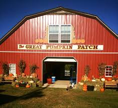 The Red Shed Tuscaloosa Facebook by 10 Best Pumpkin Patches In Alabama