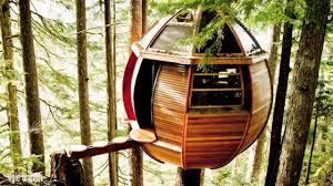 100 Whistler Tree House S Secret The Hemloft 604 Now