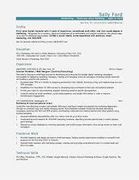 Free Collection 42 Web Developer Resume Template Picture   Free ... Web Developer Resume Examples Unique Sample Freelance Lovely Designer Best Pdf Valid Website Cv Template 68317 Example Emphasis 2 Expanded Basic Format For Profile Stock Cover Letter Frontend Samples Velvet Jobs