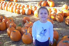 Boyd Tx Pumpkin Patch by Daisys And Diggers Its The Great Pumpkin