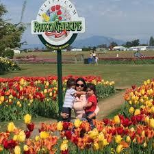 roozengaarde display garden store 571 photos 106 reviews