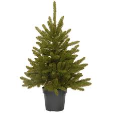 Potted Christmas Tree by Fake Christmas Tree Weeping Spruce Feel Real Artificial Christmas