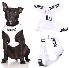 Amazon Blind Dog White Color Coded Waterproof Padded