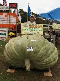 Great Pumpkin Blaze Address by Great Pumpkins Grower Wins Trifecta Of Giant Food Titles