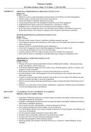 Download Professional Services Consultant Resume Sample As Image File