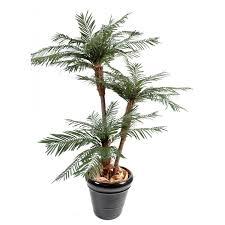 prix des palmiers exterieur palmier artificiel large choix de faux palmiers exotique
