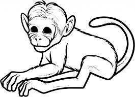 Free Printable Monkey Coloring Pages For Kids Throughout Spider Page