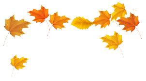 Autumn Leaves Clipart Transparent Background