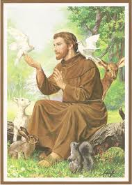 st francis of assisi kairos earth