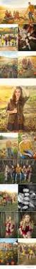 Pumpkin Patch Near Las Vegas Nv by Best 25 Fall Photo Shoots Ideas On Pinterest Fall Family Photos