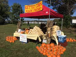 Pumpkin Picking Harford County Maryland by Harvest Wine Fest At Swan Harbor Farm Saturday Oct 24 2015