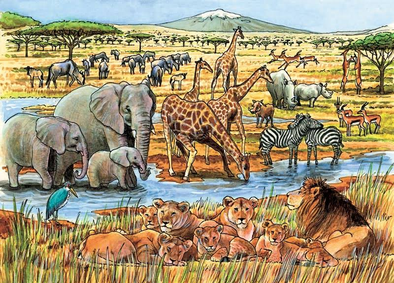 Outset Media Games Out of Africa Tray Puzzle - 35pcs