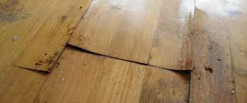 Buckled Wood Floor Water by How To Repair Buckled Parquet Floors