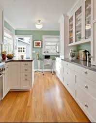 Sage Green Wall Color With White Kitchen Cabinet For Contemporary