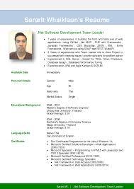 software team leader resume pdf sararit w team leader