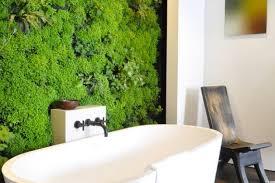 Best Bathroom Pot Plants by 10 Indoor Vertical Gardens That Make Potted Plants Look Old