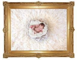 Tampas Best Family And Newborn Photographer Art