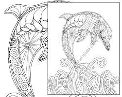 Pin Drawn Dolphin Coloring Book 5