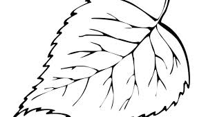 Coloring Pages Leaf Printable Lovely Leaves Oak Page Free Color Pag