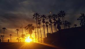 California Southern Sunset Palm Trees Ocean Pacific Waves Evening Tropical Summer Oceanside Los Angeles