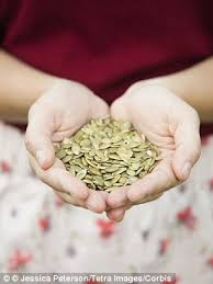 Unsalted Pumpkin Seeds Benefits by Pumpkin Seeds Are Bursting With Health And Beauty Benefits Daily