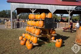 Pumpkin Patch College Station 2017 by Pumpkin Patches Corn Mazes U0026 Hay Rides Nashville Guru