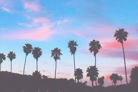 Beach Cali California Colorful Colors Cute Dream Fun Good