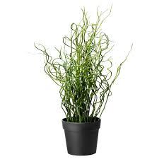 Fake Plants For The Bathroom by Artificial Plants U0026 Flowers Plants Plant Pots U0026 Stands Ikea