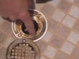bathroom smells like sewer ckcart