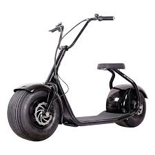 Due To This Combination The Razor Electric Scooters E300 Will Offer You A Peaceful Flight