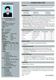 Single Page Resume Template One 1 Templates Free Download