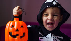 Grants Farm St Louis Halloween by Halloween Events In St Louis Oct 27 31 Stlparent Com