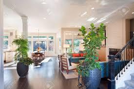 große wohnzimmer interieur mit holzböden pflanzen speisezimmer und kamin in new luxury home