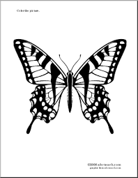 Coloring Page Tiger Swallowtail Butterfly
