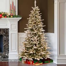 7 Ft Slim Christmas Tree by 2 28 M 7 5 Ft Slim Snowy Cambridge Fir Christmas Tree