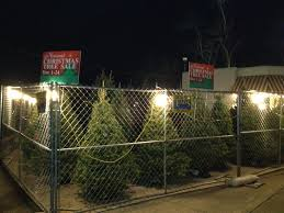 Dillards Christmas Tree Farm by Christmas Tree Shop Locations Affordable Outlets Stores In Erie