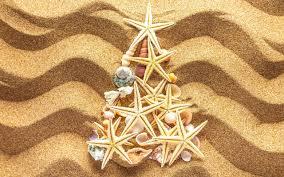 Seashell Christmas Tree Topper by Seashell Christmas Trees Christmas Lights Decoration