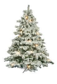 Slim Snow Flocked Christmas Tree by 6 5 Ft Flocked Alaskan Clear Lit Christmas Tree Christmas Tree