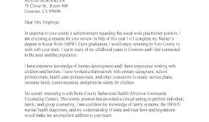 Example Of Guidance Counselor Resume Sample Human Services School