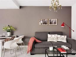 graue wand streich idee für kleines wohnzimmer gestaltung
