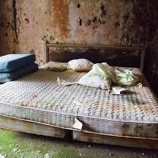 schimmel im schlafzimmer entnahmetipps vorbeugung und