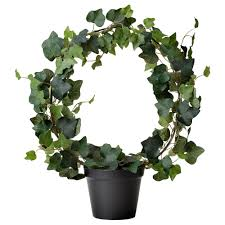 Pot Plants For The Bathroom by Artificial Plants U0026 Flowers Plants Plant Pots U0026 Stands Ikea