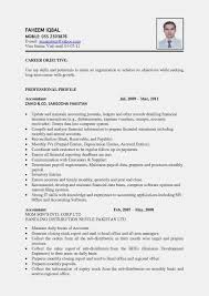 Resume Format Philippines Free Download New The Best Sample