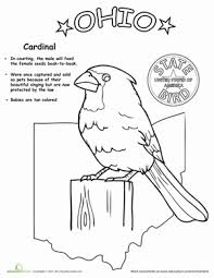 Full Size Of Coloring Pageohio Pages State Bird Life Science Page Large