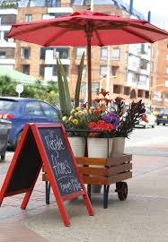 Bright And Cheerful Flower Cart