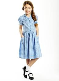a traditional gingham dress with a ruched waist line and ladder