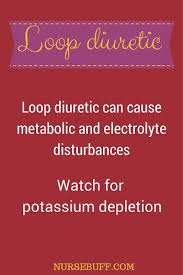 High Ceiling Diuretics Meaning by Best 25 Loop Diuretic Ideas On Pinterest Potassium Sparing