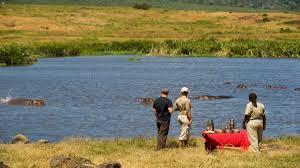 100 Crater Lodge Ngorongoro Luxury In Ngorongoro Jacada