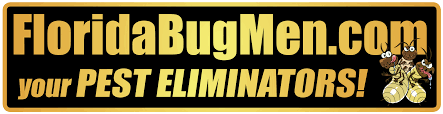 Exterminators In Central FL: Organic Pest Control | Florida ... Bugster Bugs Pest Control Wordpress Theme For Home Mice Rodent Nj Get Free Inspection By Licensed Layla Mattress Review Reasons To Buynot Buy 2019 Mortein Powergard Flea Crawling Insect Bomb 2 X 150g 1count Repeller 7 Steps A Healthy Lawn Pride Holly Springs Sameday Service Triangle Family Dollar Smartspins In Smart Coupons App Spartan Mosquito Eradicator Yards Pack Rottler Solutions Experts In St Louis